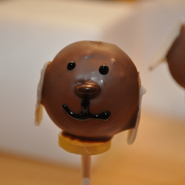 doggy cake pops