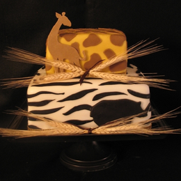 African Themed Dinner Party Cake